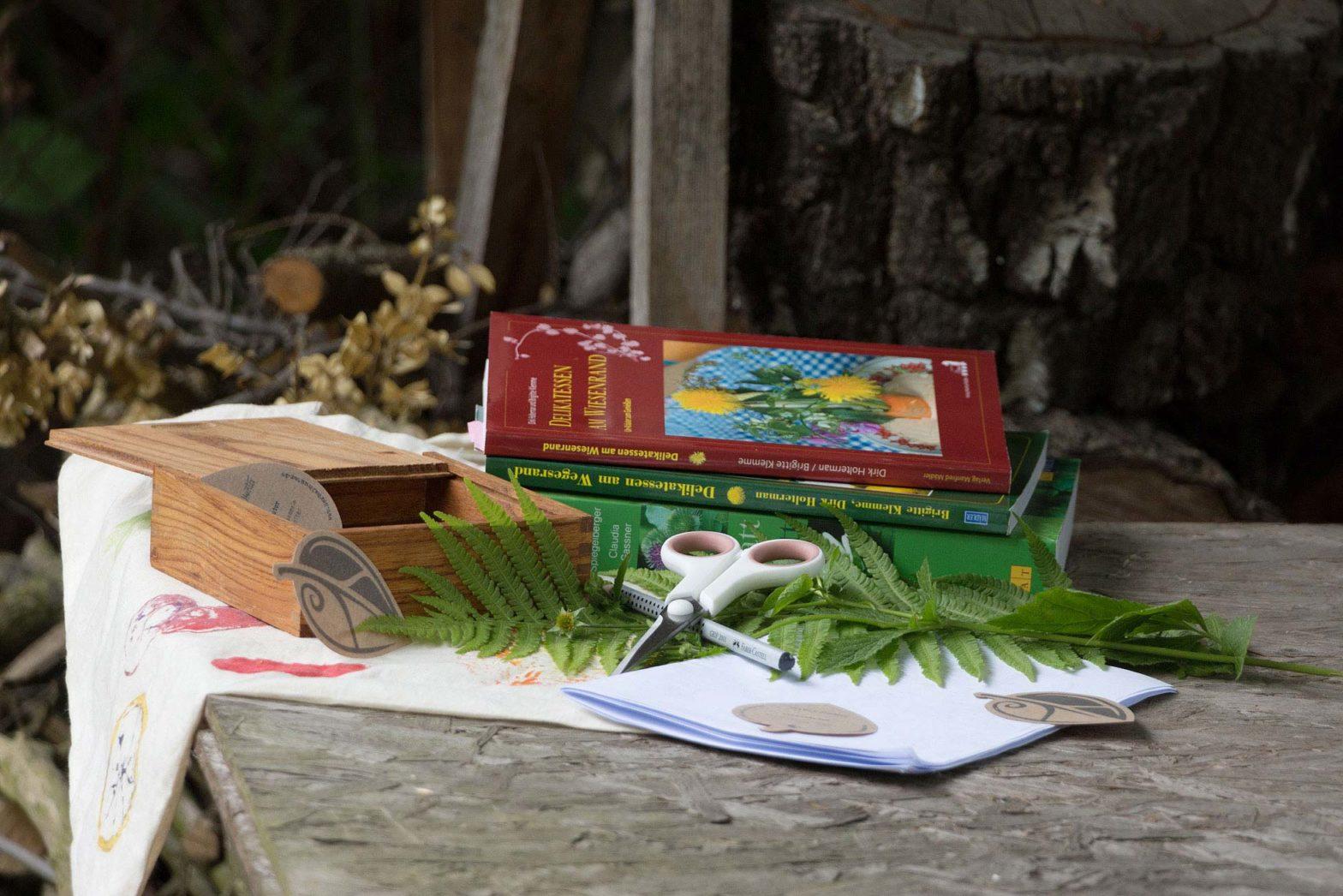 Kräuterbuch Empfehlung – Literaturempfehlungen zum Thema essbare Wildpflanzen: